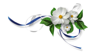 flower-divider-ribbons