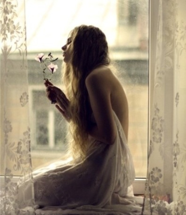 beauty-floral-window